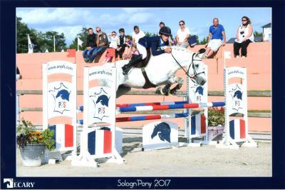 Iris et roden sologn pony 2017147